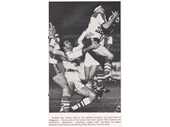 97 - 1984 Panasonic Cup game against Canterbury