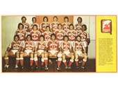 121 - 1981 Redcliffe team