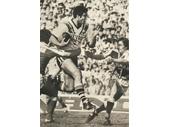 134 - 1981 Grand Final - Mal Meninga goes airborne