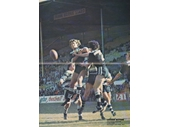 83 - 1977 Souths v Brothers