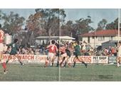 61 - Kougari Oval