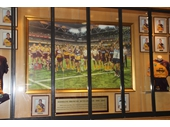 88 - 20th Anniversary painting tribute to the Broncos