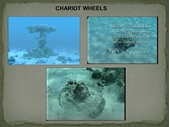 18 - Chariot wheels in Red Sea
