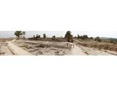 56 - Megiddo
