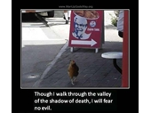 26 - Chicken at KFC