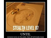 47 - Stealth Cat