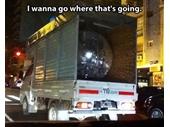 67 - Disco Ball
