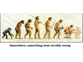 70 - Evolution