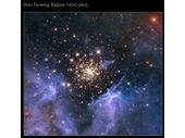 36 - NGC 3603
