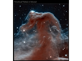 49 - Horsehead Nebula in infrared light