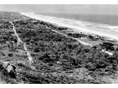 1939 Mermaid Beach