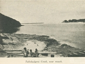 1940's Tallebudgera Creek