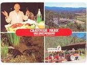 1980's Crayfish Park postcard