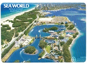 1980's Sea World Postcard 1