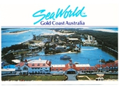 1980's Sea World Postcard 2