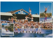 1980's Sea World Postcard 4