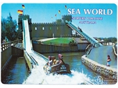 1980's Sea World Postcard 5