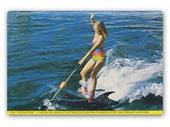1980's Seaworld dolphin ride