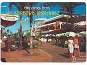 1980's Surfers Paradise postcard 3