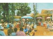 1950's Surfers Paradise Beer Garden