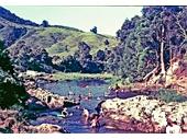 1960's Currumbin Rock Pool