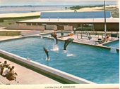 1960's Marineland