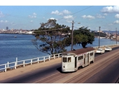 16 - A tram on Kingsford Smith Drive