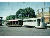 42 - A Tram in Newstead