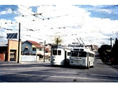 50 - A tram and trolley bus on Stanley St in Woolloongabba