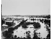 131 - Botanic Gardens during the 1893 Flood