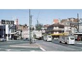 89 - Trams at Petrie Bight