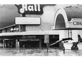 75 - A man dives into the floodwaters near Festival Hall
