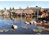 124 - Polynesian Lagoon at Expo 88