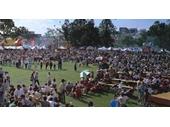 35 - Greek festival at Musgrave Park