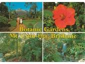 22 - Mt Coot-tha Botanic Gardens