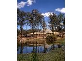 23 - Mount Coot-tha Botanic Gardens