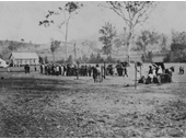 66 - Brookfield Show in 1911