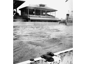 115 - Albion Park Paceway during the 1974 Flood