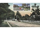 137 - Moray Street