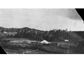 151 - McGinn's farm at Ferny Grove in 1912
