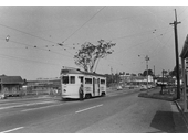 83 - Outbound tram passes Kedron Brook on Gympie Road