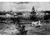 95 - Looking west across Gympie Road from the present location of Chermside Shopping Centre in 1904