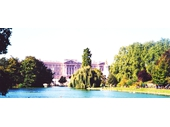 L08 - Buckingham Palace from St James Park