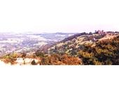 Derbyshire 6