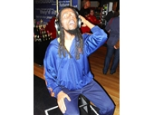 MT48 - Bob Marley
