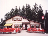 95 - Swiss Cafe near Mt Pilatus