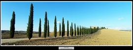 49 Tuscany Italy
