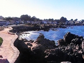17 - Monterey from Lovers Point