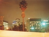 29 - Downtown Los Angeles