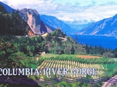 20 - Columbia River Gorge